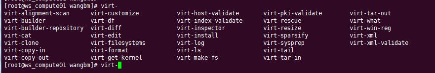 修改 KVM 镜像文件的三种方法插图(2)