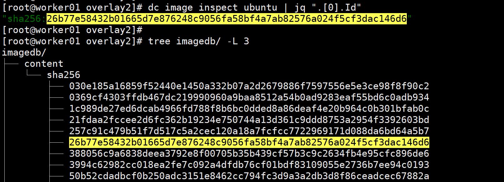 深入理解 Docker 容器镜像分层的原理插图(3)