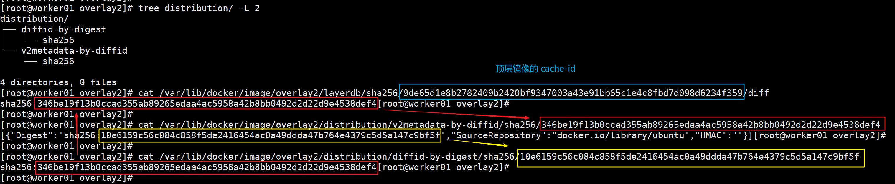 深入理解 Docker 容器镜像分层的原理插图(1)